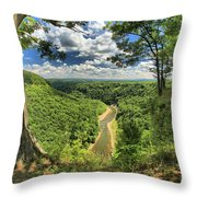 River In The Valley Throw Pillow