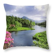 River Leading To A Mountain Throw Pillow