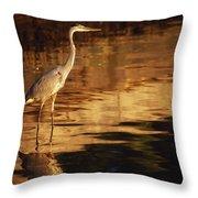 River Liffey, County Dublin, Ireland Throw Pillow