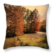 River Of Hope Throw Pillow by Jai Johnson