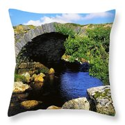 River Owenwee, Poisoned Glen, Co Throw Pillow