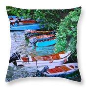 River Rainbow Throw Pillow