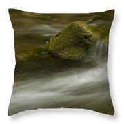 River Rapid 7 Throw Pillow