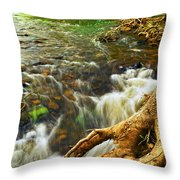 River Rapids Throw Pillow by Elena Elisseeva