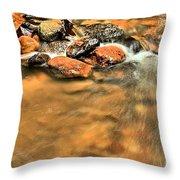 River Rock Swirl Throw Pillow