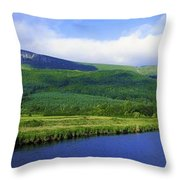 River Roe, Binevenagh, Co Derry Throw Pillow
