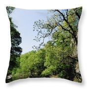 River Roe, Roe Valley, Limavady, Co Throw Pillow