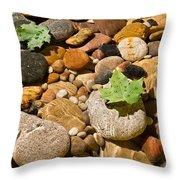 River Stones Throw Pillow by Steve Gadomski