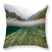 River Surface Throw Pillow