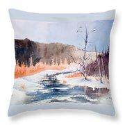 River Valley Throw Pillow