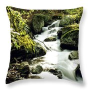 River With Rocks In The Forest Throw Pillow
