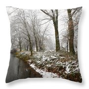 River With Snow Throw Pillow