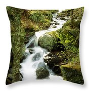 River With Trees In The Forest Throw Pillow