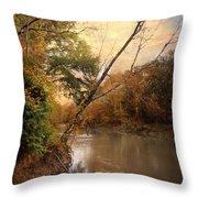 Riverbank 1 Throw Pillow