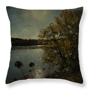Rivers Thoughts  Throw Pillow