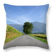 Road And Trees Throw Pillow