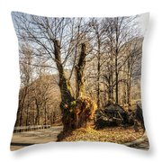 Road Curve With Trees Throw Pillow