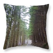 Road In The Forest Throw Pillow
