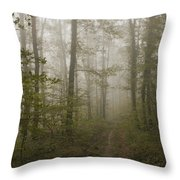 Road Of Insecurity Throw Pillow
