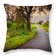 Road On Woods Throw Pillow by Carlos Caetano