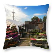 Road Side Stand Throw Pillow