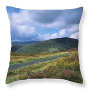 Road Through A Mountain Range, County Throw Pillow