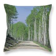 Road Through An Aspen Forest, Manti La Throw Pillow