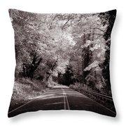 Road Through Autumn - Black And White Throw Pillow