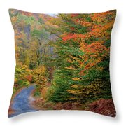Road Through Autumn Woods Throw Pillow by Larry Landolfi and Photo Researchers