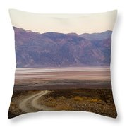 Road Through Death Valley Throw Pillow