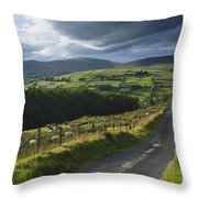 Road Through Glenelly Valley, County Throw Pillow