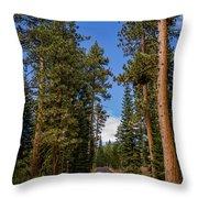 Road Through Lassen Forest Throw Pillow