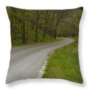 Road Thru Woods Spring 1 Throw Pillow