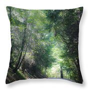 Road To Apple Hill Throw Pillow