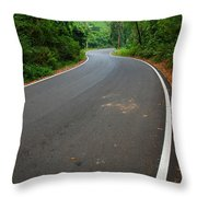 Road To Destiny Throw Pillow