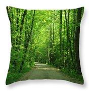Road To Jasper Woods Throw Pillow
