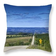 Road To The Valley Throw Pillow