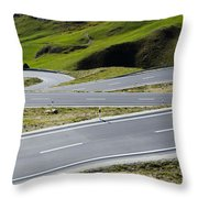 Road With Curves Throw Pillow by Mats Silvan