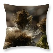 Roadside Attractions Throw Pillow