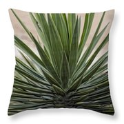 Roadside Discovery Throw Pillow