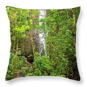 Roadside Waterfall Throw Pillow