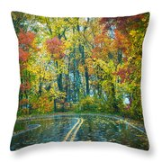 Roadway After The Rain  Throw Pillow