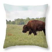 Roaming The Plains Throw Pillow