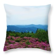Roan Mountain Throw Pillow