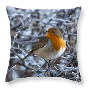 Robin On A Frosty Morning Throw Pillow