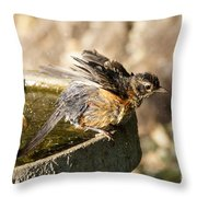 Robin Shaking Water Off Throw Pillow