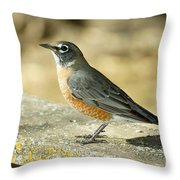Robins Throw Pillow