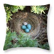 Robins Nest And Cowbird Egg Throw Pillow