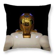 Robonaut 2, A Dexterous, Humanoid Throw Pillow