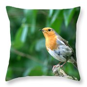 Robun 2 Throw Pillow